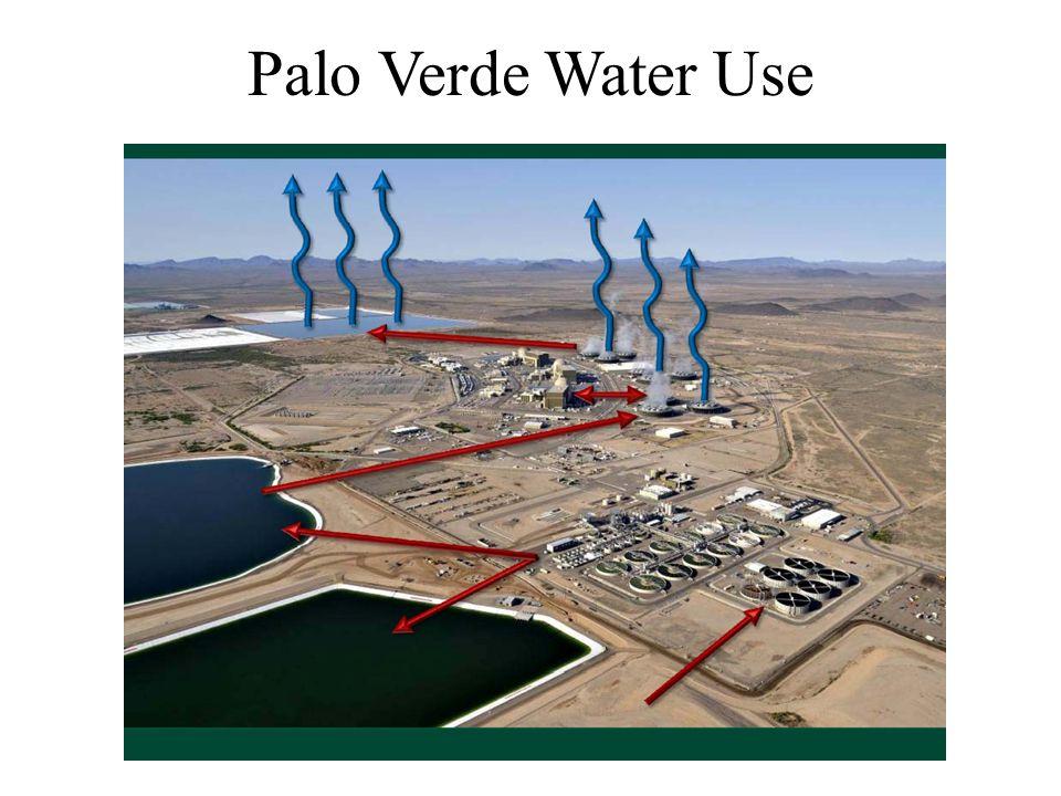 Palo Verde Water Use