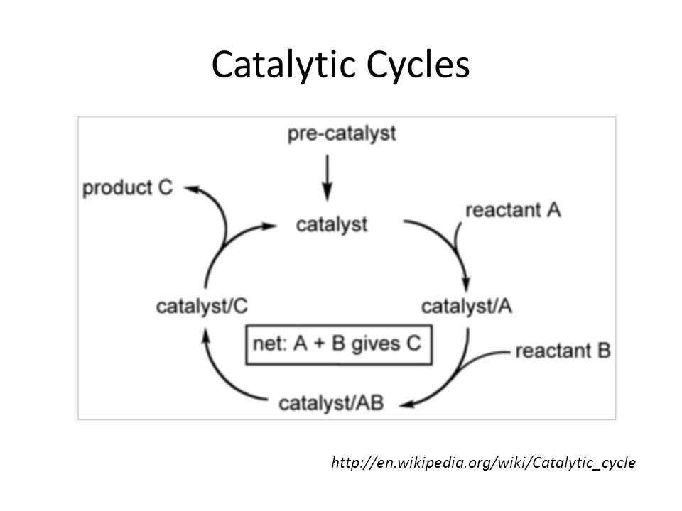 Catalytic Cycles http://en.wikipedia.org/wiki/Catalytic_cycle