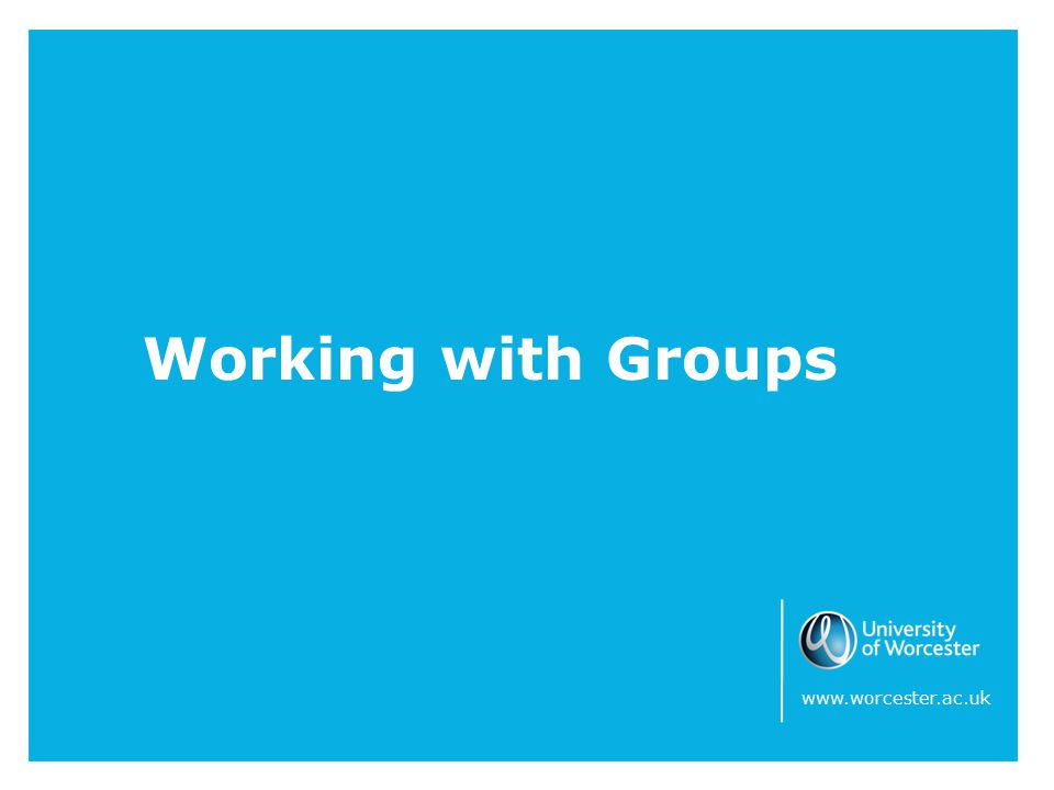 Working with Groups www.worcester.ac.uk