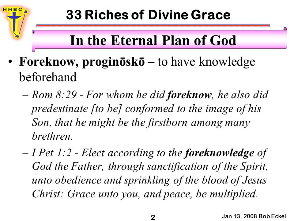 33 Riches of Divine Grace Jan 13, 2008 Bob Eckel 2 In the Eternal Plan of God Foreknow, proginōskō – to have knowledge beforehand –Rom 8:29 - For whom