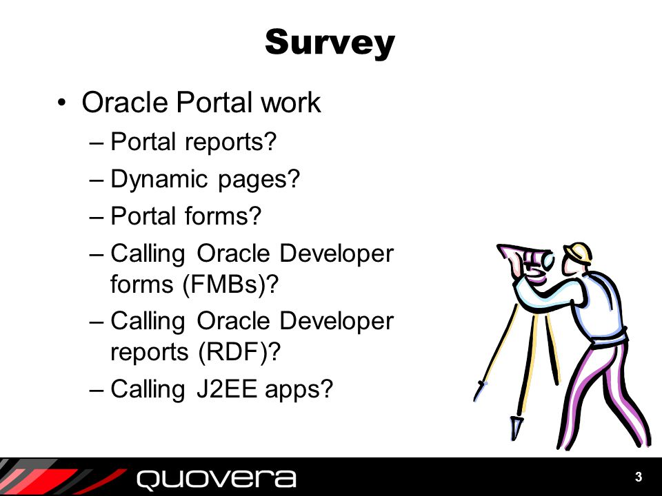 3 Survey Oracle Portal work –Portal reports. –Dynamic pages.