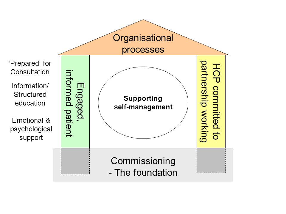 Engaged, informed patient HCP committed to partnership working Organisational processes Commissioning - The foundation Information/ Structured education 'Prepared' for Consultation Emotional & psychological support Supporting self-management