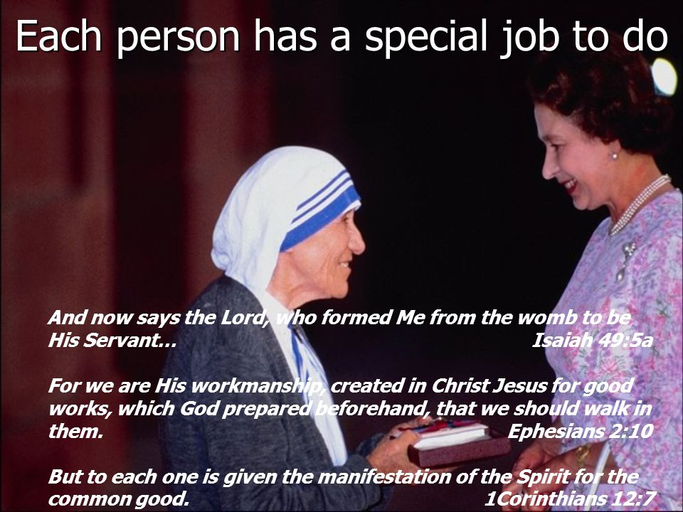 Each person has a special job to do And now says the Lord, who formed Me from the womb to be His Servant… Isaiah 49:5a For we are His workmanship, created in Christ Jesus for good works, which God prepared beforehand, that we should walk in them.