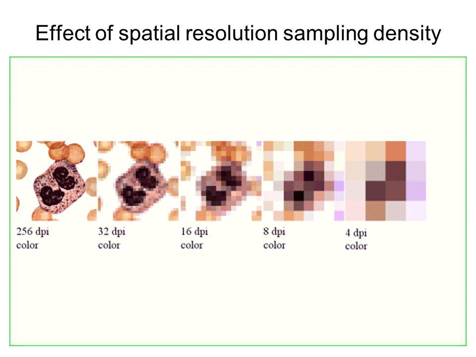 Effect of spatial resolution sampling density