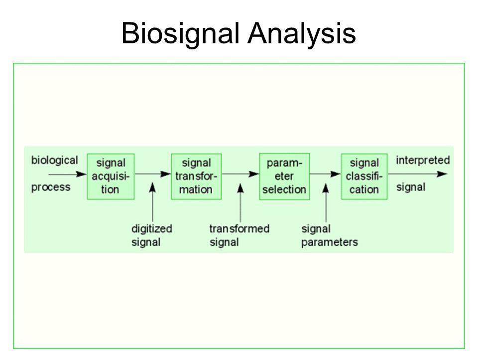 Biosignal Analysis