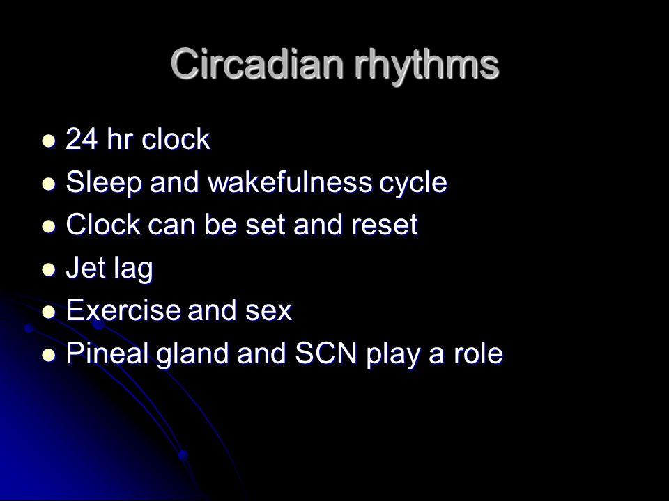 Circadian rhythms 24 hr clock 24 hr clock Sleep and wakefulness cycle Sleep and wakefulness cycle Clock can be set and reset Clock can be set and rese
