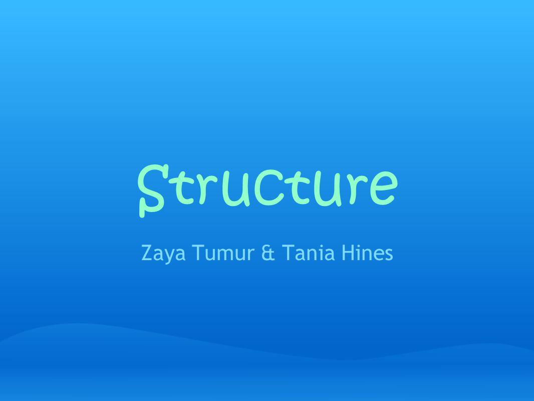 Structure Zaya Tumur & Tania Hines