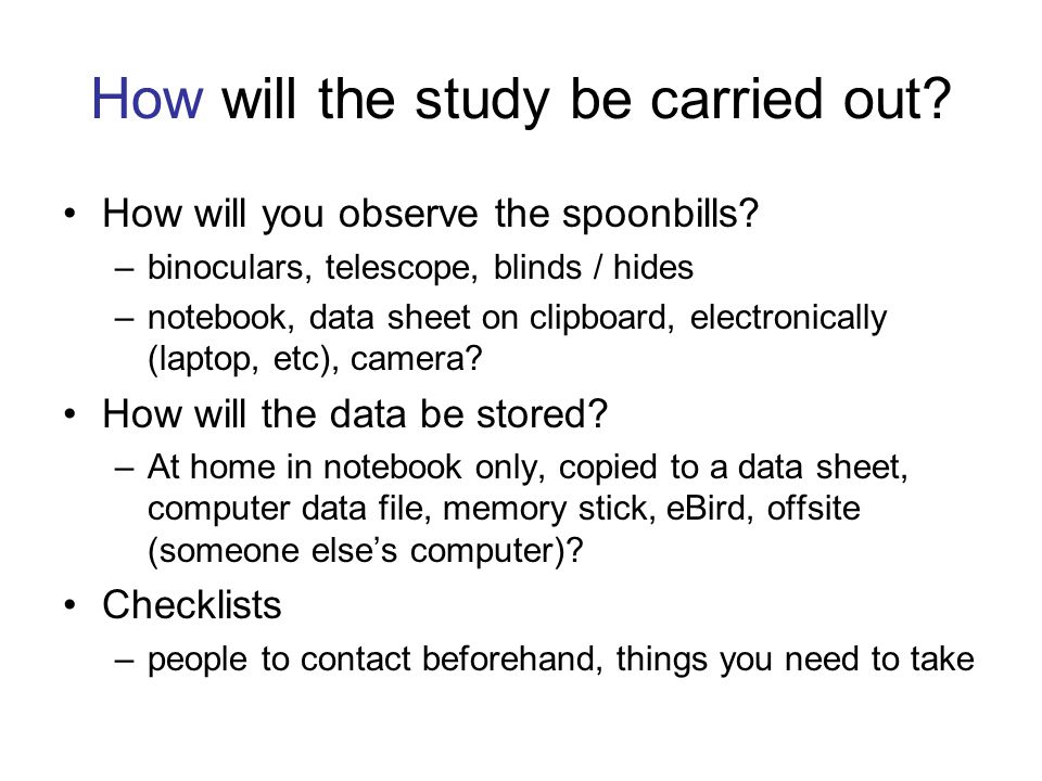 How will the study be carried out? How will you observe the spoonbills? –binoculars, telescope, blinds / hides –notebook, data sheet on clipboard, ele