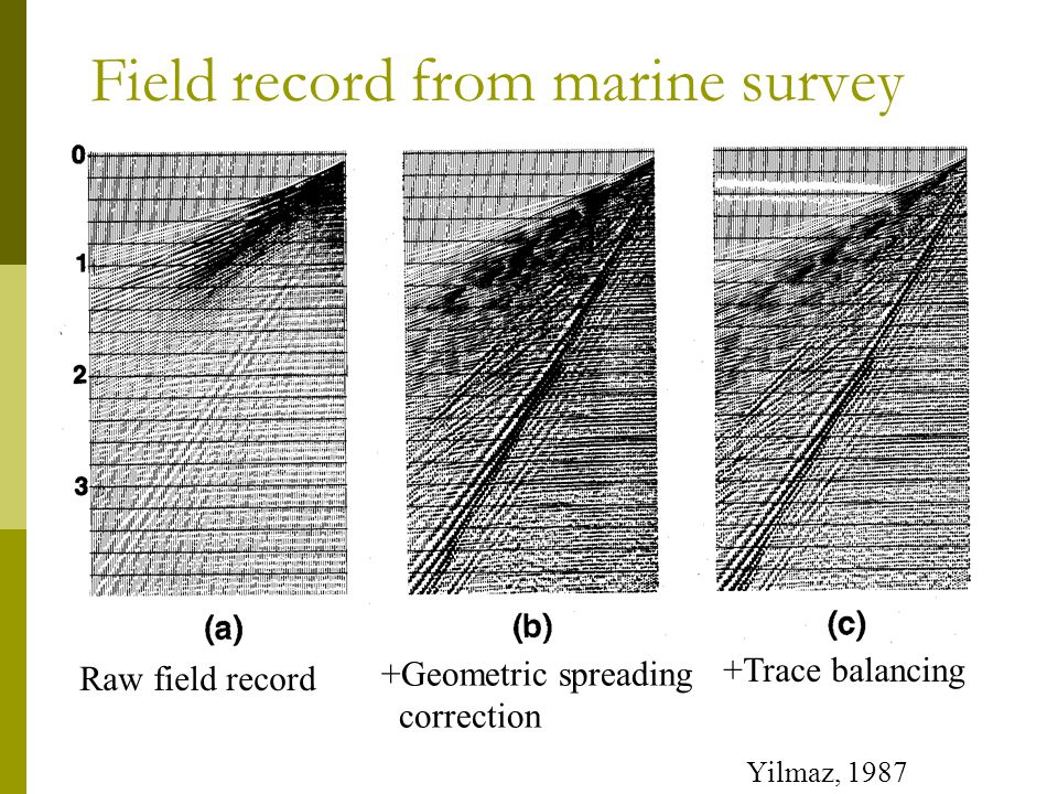 Field record from marine survey Raw field record +Geometric spreading correction +Trace balancing Yilmaz, 1987