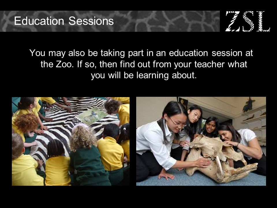 Education Sessions You may also be taking part in an education session at the Zoo.