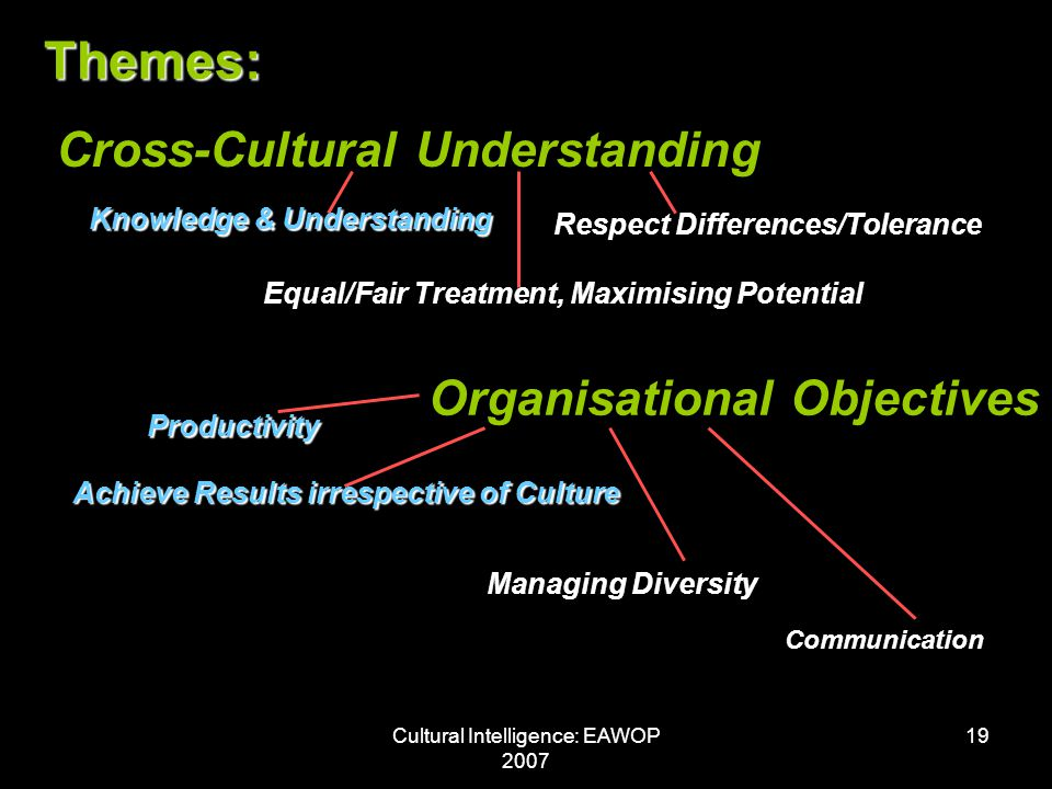 Cultural Intelligence: EAWOP 2007 19 Themes: Cross-Cultural Understanding Organisational Objectives Knowledge & Understanding Respect Differences/Tolerance Equal/Fair Treatment, Maximising Potential Productivity Achieve Results irrespective of Culture Managing Diversity Communication