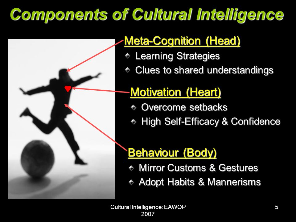 Cultural Intelligence: EAWOP 2007 5 Components of Cultural Intelligence Meta-Cognition (Head) Learning Strategies Clues to shared understandings Motivation (Heart) Overcome setbacks High Self-Efficacy & Confidence Behaviour (Body) Mirror Customs & Gestures Adopt Habits & Mannerisms