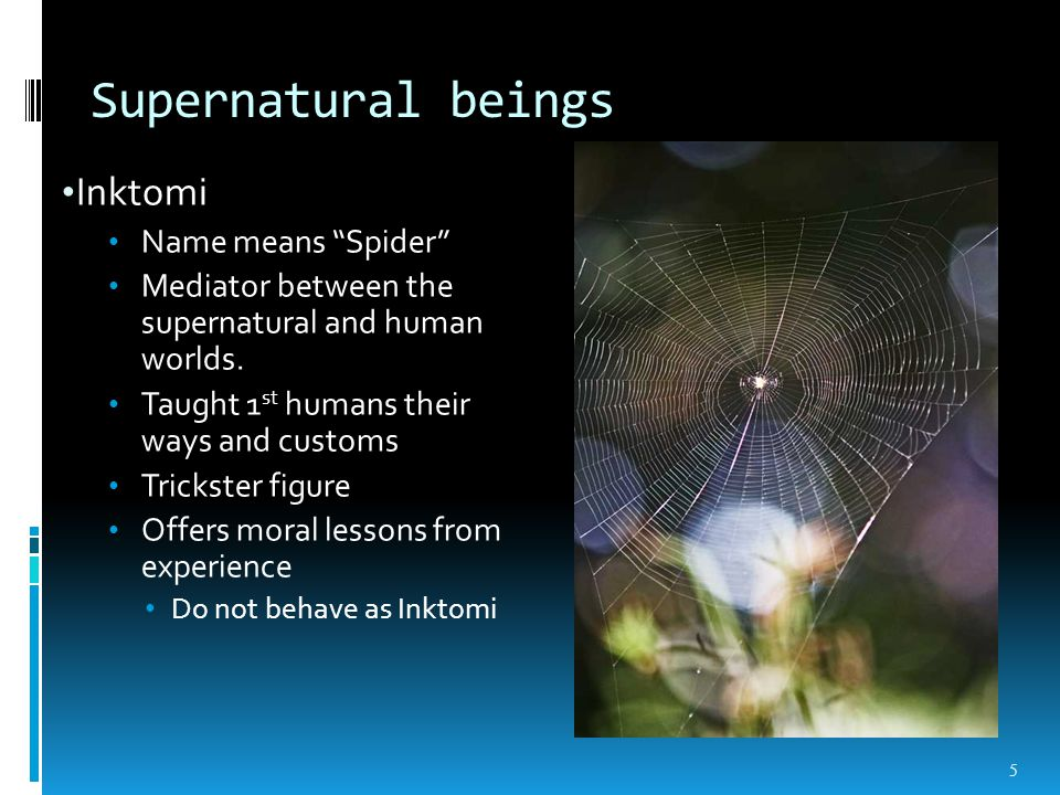 Supernatural beings Inktomi Name means Spider Mediator between the supernatural and human worlds.
