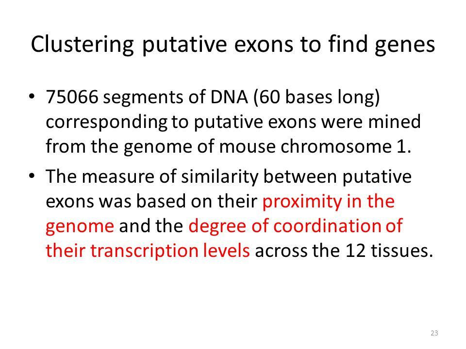 Clustering putative exons to find genes 75066 segments of DNA (60 bases long) corresponding to putative exons were mined from the genome of mouse chro