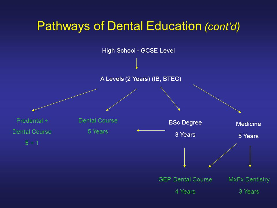 Pathways of Dental Education (cont'd) High School - GCSE Level A Levels (2 Years) (IB, BTEC) Dental Course 5 Years Predental + Dental Course 5 + 1 BSc Degree 3 Years GEP Dental Course 4 Years Medicine 5 Years MxFx Dentistry 3 Years