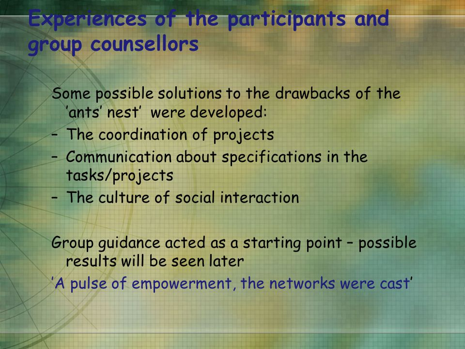Experiences of the participants and group counsellors Some possible solutions to the drawbacks of the 'ants' nest' were developed: –The coordination of projects –Communication about specifications in the tasks/projects –The culture of social interaction Group guidance acted as a starting point – possible results will be seen later 'A pulse of empowerment, the networks were cast'
