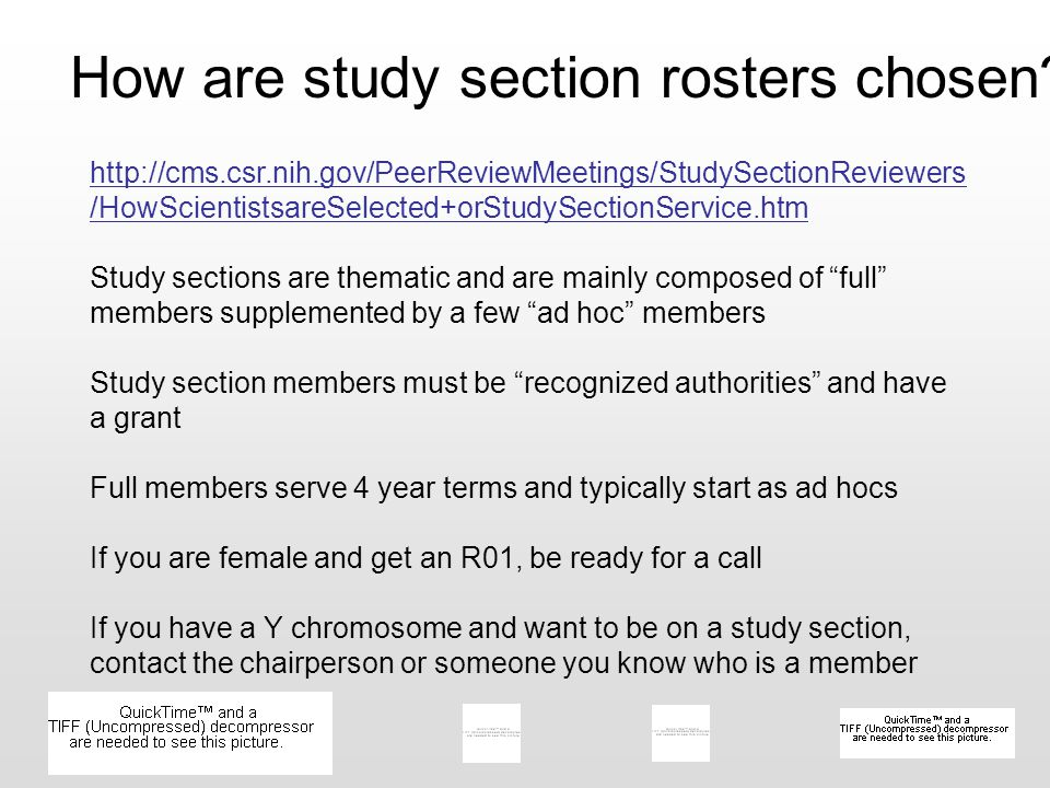 How are study section rosters chosen? http://cms.csr.nih.gov/PeerReviewMeetings/StudySectionReviewers /HowScientistsareSelected+orStudySectionService.