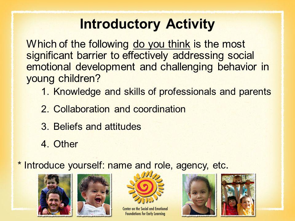 Program- or Center-wide Level What is a program-wide model for preventing/addressing challenging behavior.