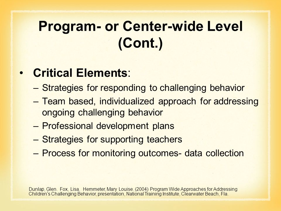 Program- or Center-wide Level (Cont.) Critical Elements: –Strategies for responding to challenging behavior –Team based, individualized approach for a