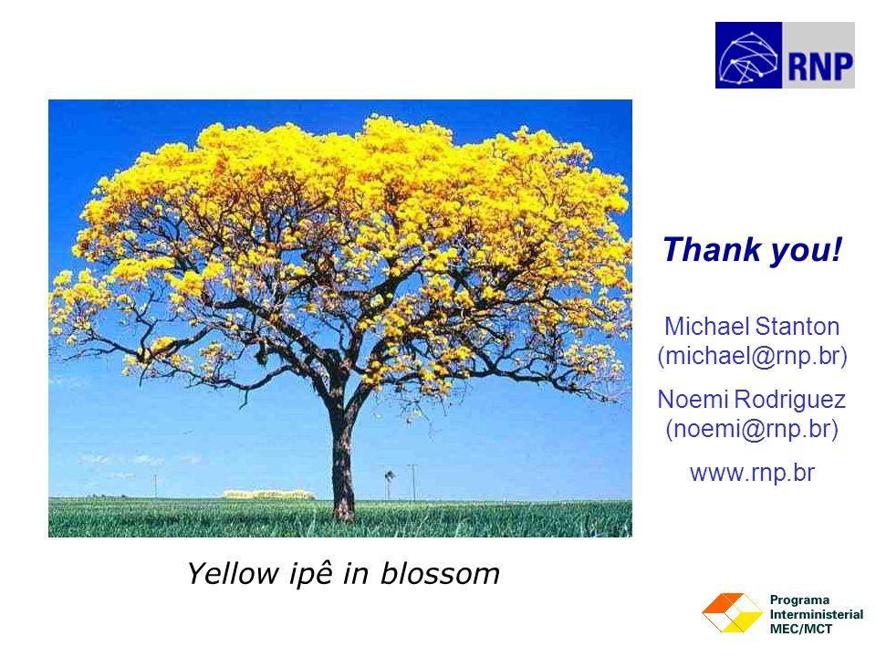 Michael Stanton (michael@rnp.br) Noemi Rodriguez (noemi@rnp.br) www.rnp.br Thank you.