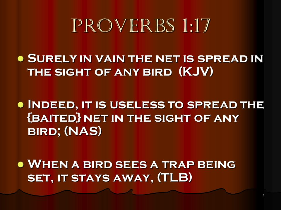 3 Proverbs 1:17 Surely in vain the net is spread in the sight of any bird (KJV) Surely in vain the net is spread in the sight of any bird (KJV) Indeed