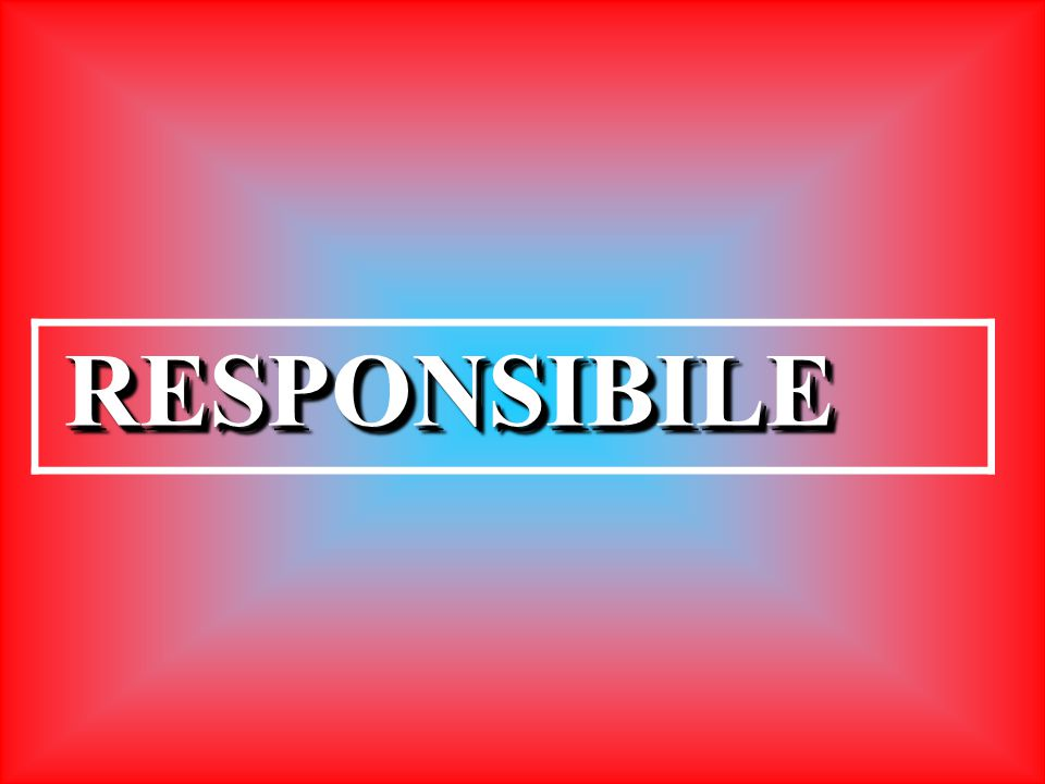 RESPONSIBILERESPONSIBILE