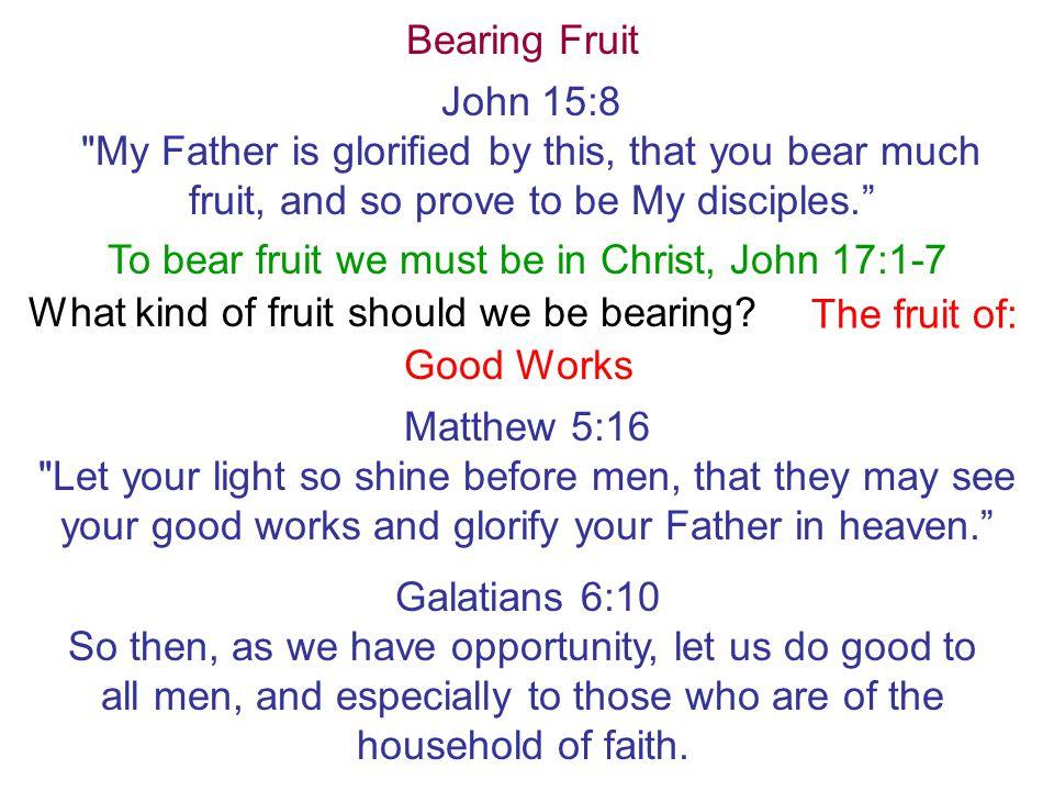Bearing Fruit John 15:8