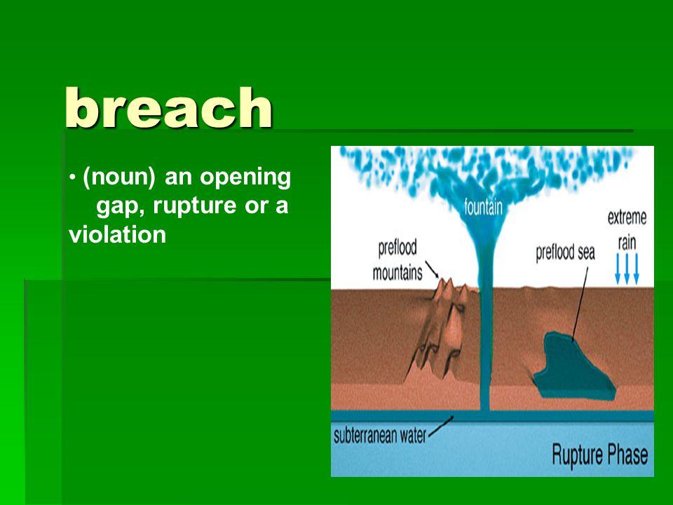 breach (noun) an opening gap, rupture or a violation