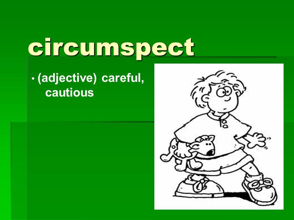 circumspect (adjective) careful, cautious