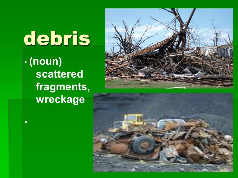 debris (noun) scattered fragments, wreckage