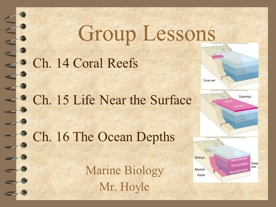 Group Lessons Marine Biology Mr. Hoyle Ch. 14 Coral Reefs Ch.