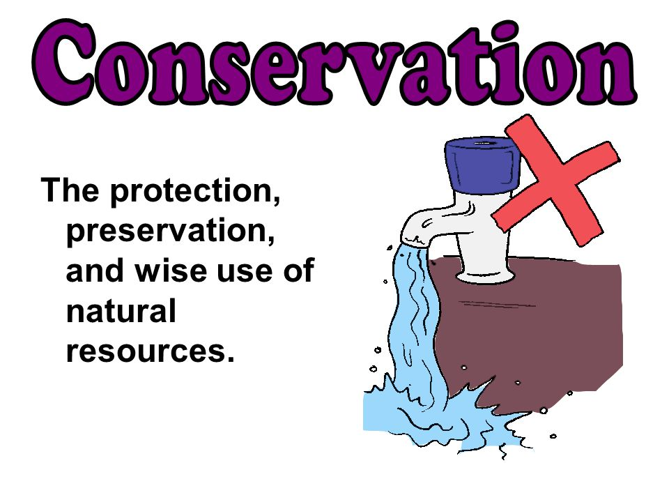The protection, preservation, and wise use of natural resources.
