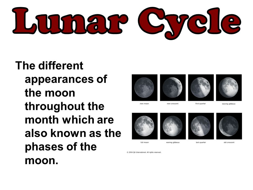 The different appearances of the moon throughout the month which are also known as the phases of the moon.