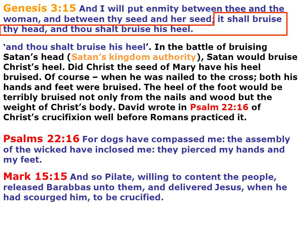' and thou shalt bruise his heel'. In the battle of bruising Satan's head (Satan's kingdom authority), Satan would bruise Christ's heel. Did Christ th