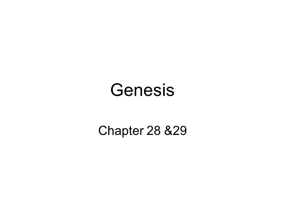 Genesis Chapter 28 &29