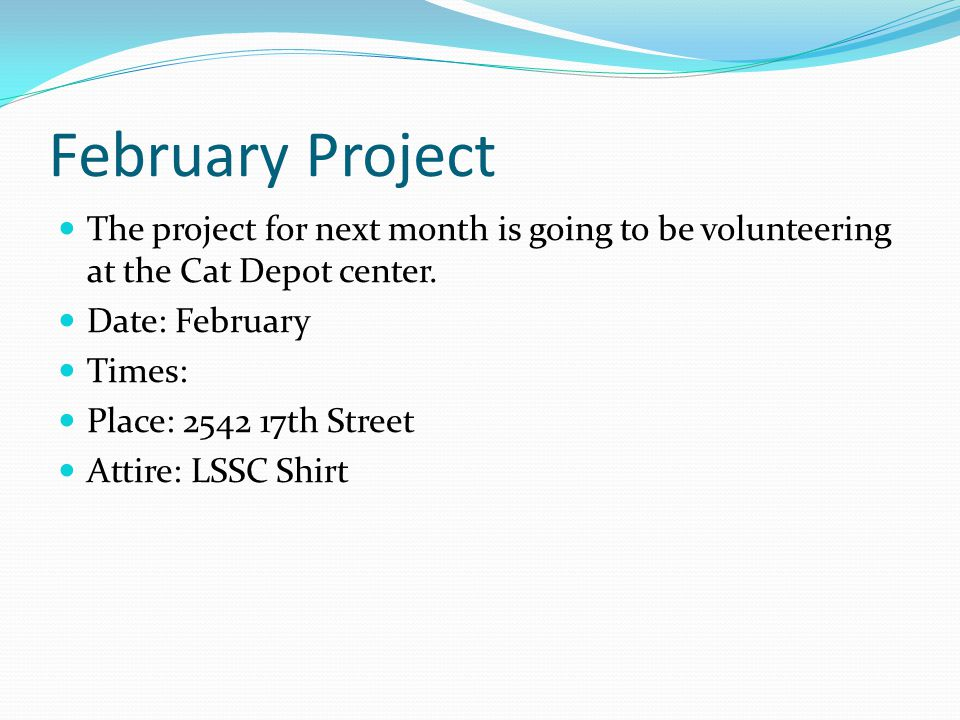 February Project The project for next month is going to be volunteering at the Cat Depot center.
