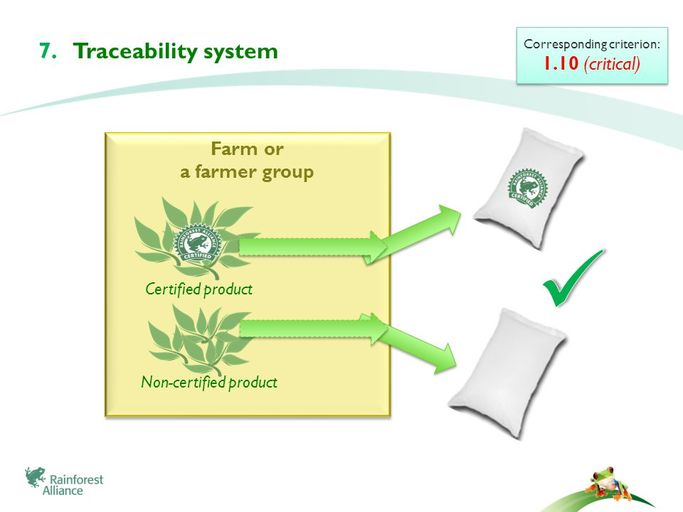 Farm or a farmer group Farm or a farmer group Certified product Non-certified product Corresponding criterion: 1.10 (critical) Corresponding criterion: 1.10 (critical) 7.Traceability system
