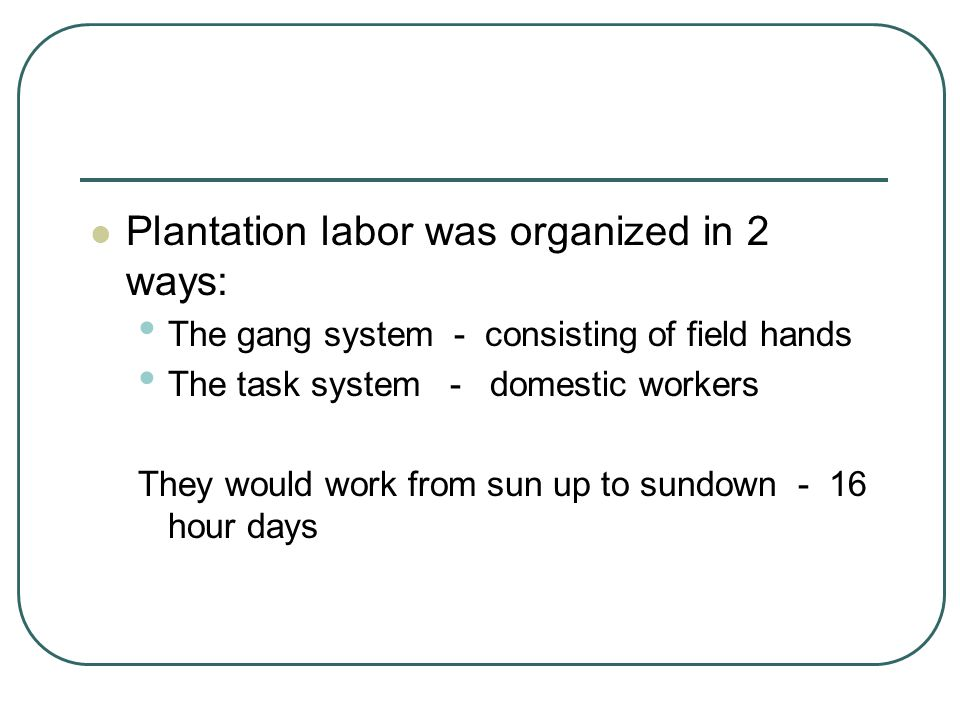 Plantation labor was organized in 2 ways: The gang system - consisting of field hands The task system - domestic workers They would work from sun up t