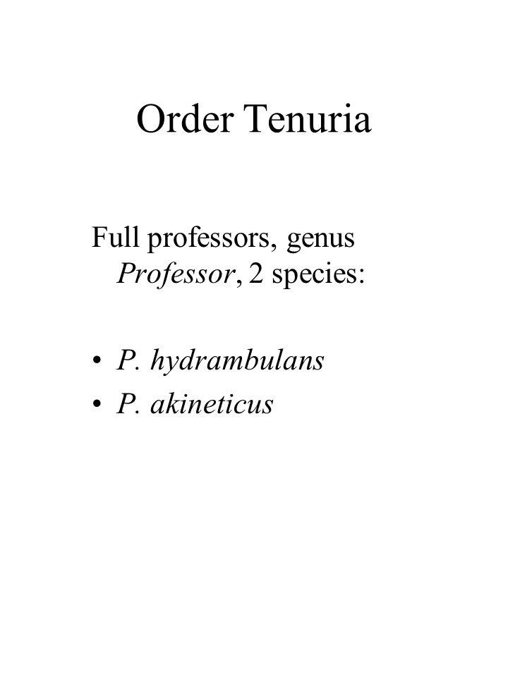 Order Tenuria Full professors, genus Professor, 2 species: P. hydrambulans P. akineticus