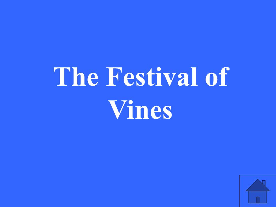 The Festival of Vines