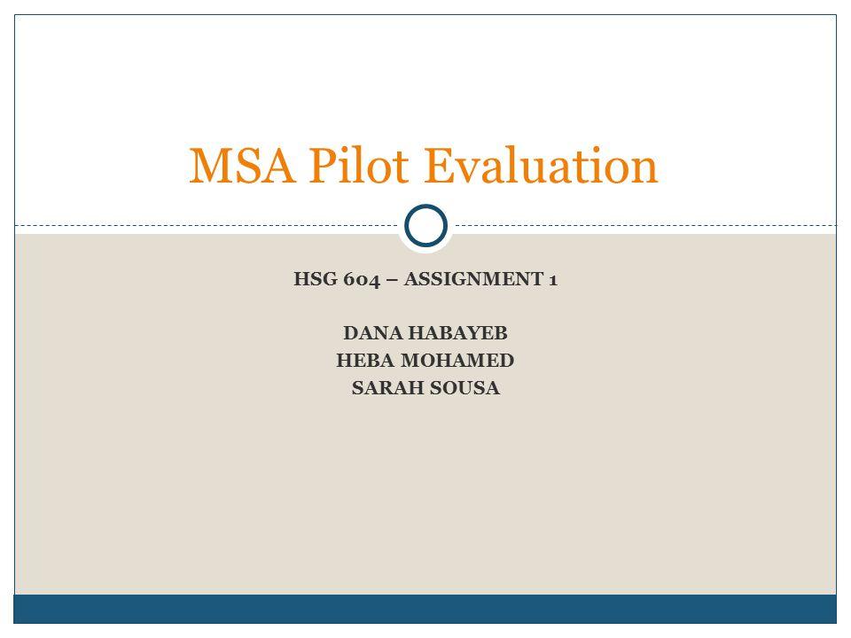 HSG 604 – ASSIGNMENT 1 DANA HABAYEB HEBA MOHAMED SARAH SOUSA MSA Pilot Evaluation