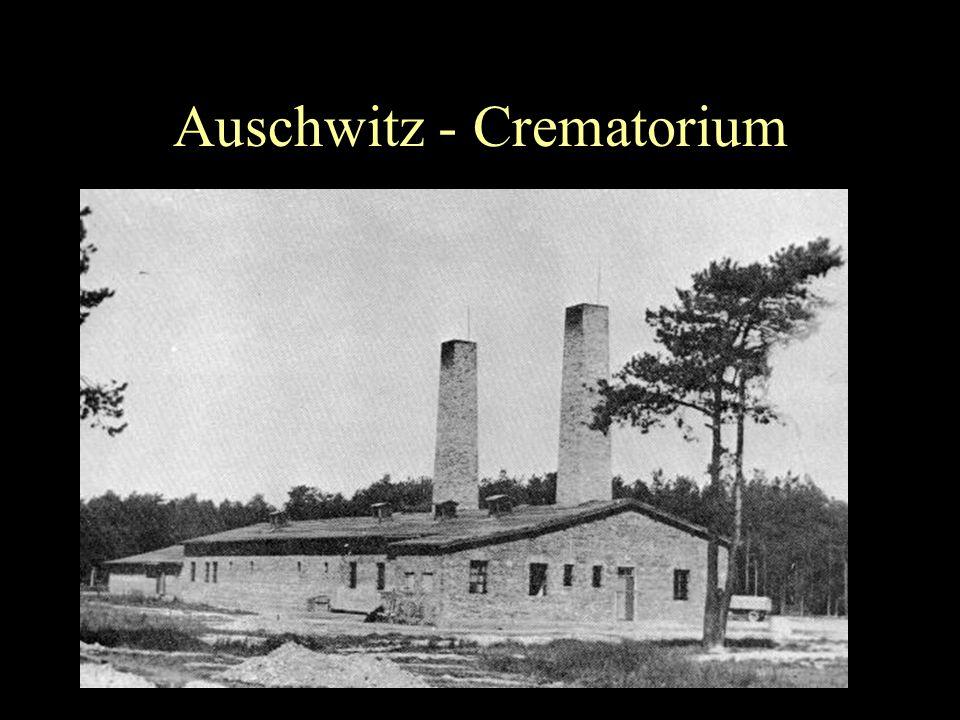 Auschwitz - Furnace
