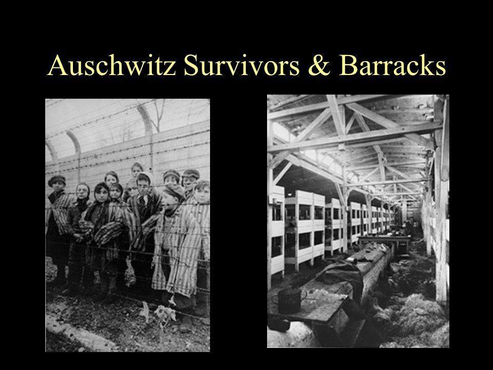 Auschwitz Survivors & Barracks