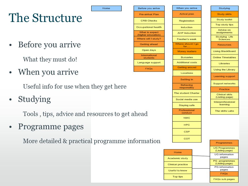 The Structure 10 Before you arrive What they must do! When you arrive Useful info for use when they get here Studying Tools, tips, advice and resource