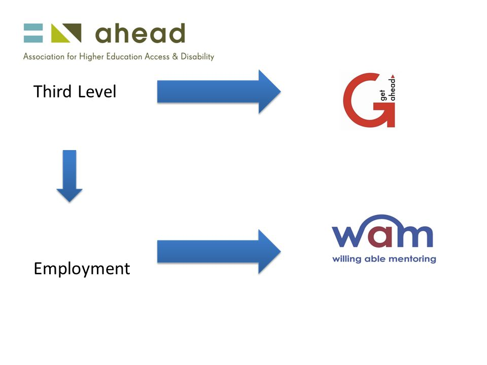 Third Level Employment