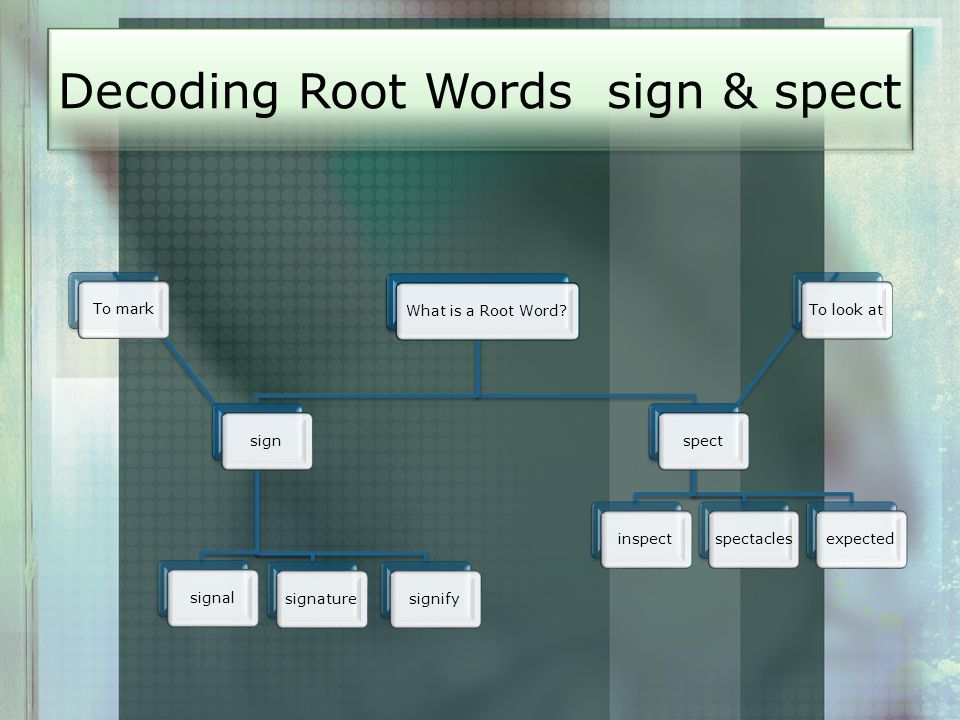 Decoding Root Words sign & spect What is a Root Word?signTo marksignalsignaturesignifyspectTo look atinspectspectaclesexpected