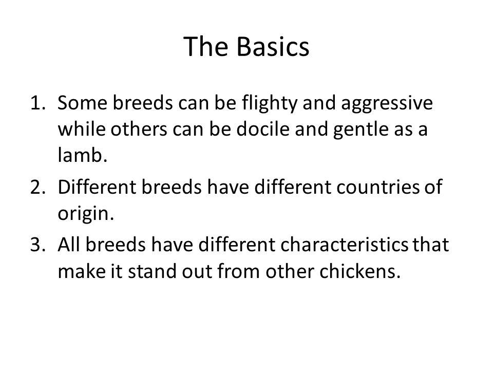 The Basics 1.Some breeds can be flighty and aggressive while others can be docile and gentle as a lamb.