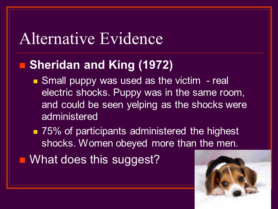 Alternative Evidence Sheridan and King (1972) Small puppy was used as the victim - real electric shocks. Puppy was in the same room, and could be seen