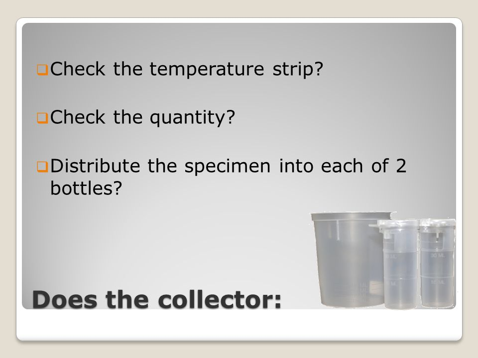Does the collector:  Check the temperature strip?  Check the quantity?  Distribute the specimen into each of 2 bottles?