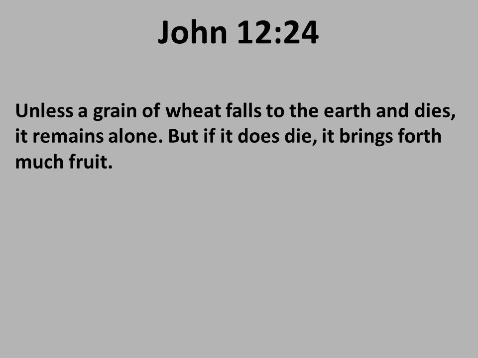 John 12:24 Unless a grain of wheat falls to the earth and dies, it remains alone.